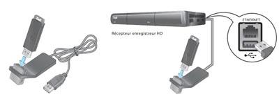 Branchez le câble de rallonge USB du support sur un port USB de votre enregistreur HD